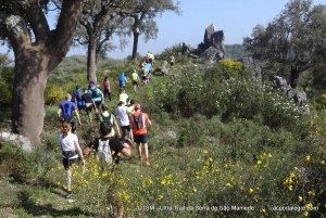 trail running: correr na natureza